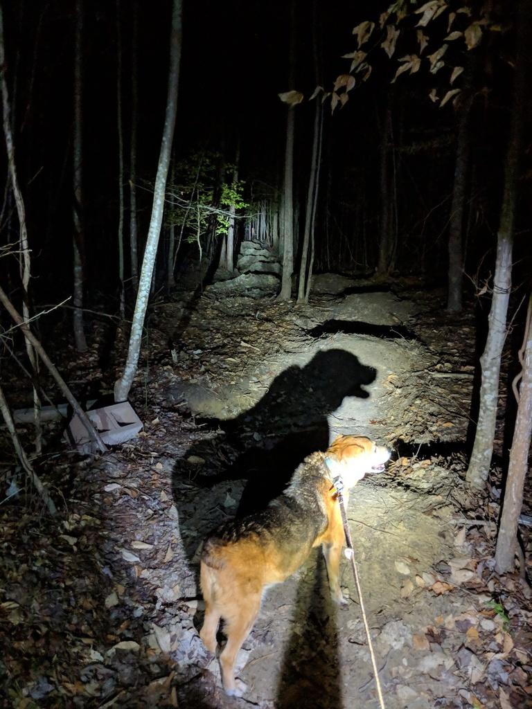 Trail Smoothing-img_20190207_191144-1124x1499.jpg