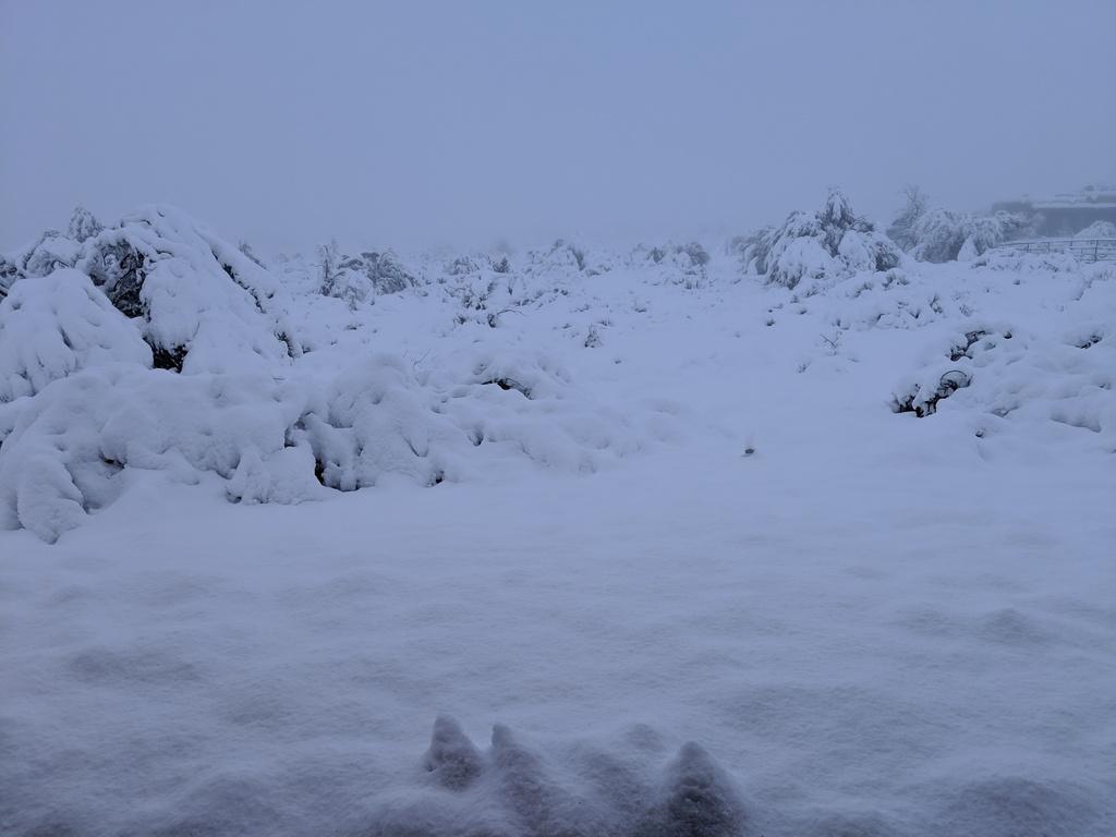 Desert Snow-img_20190222_075142.jpg