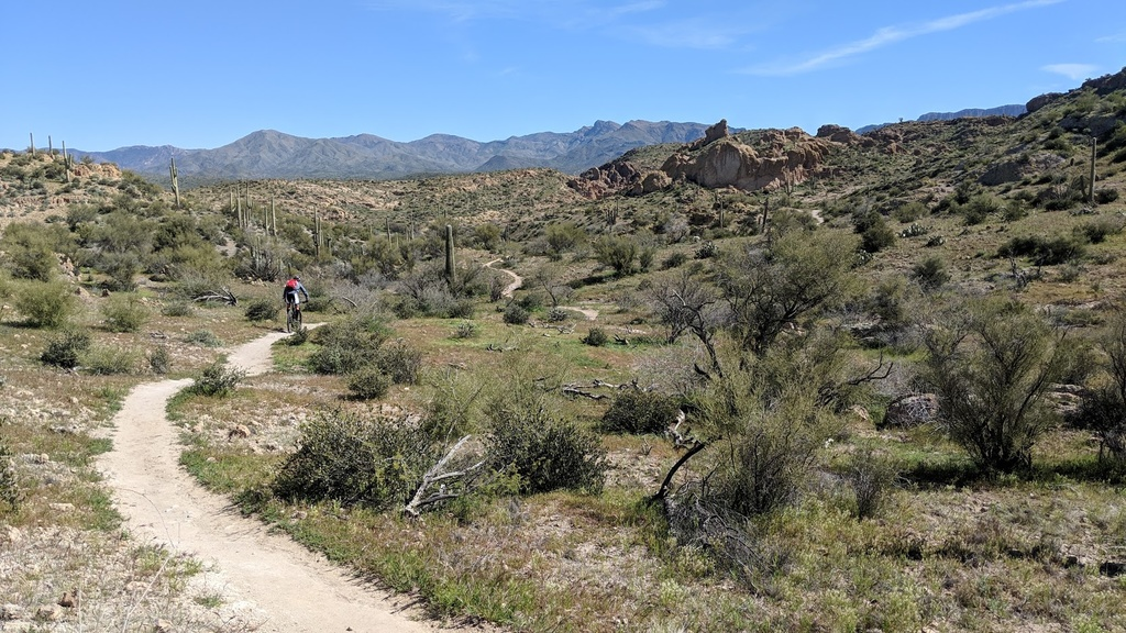 Arnett Canyon Trail (Picketpost)-img_20190315_103626.jpg