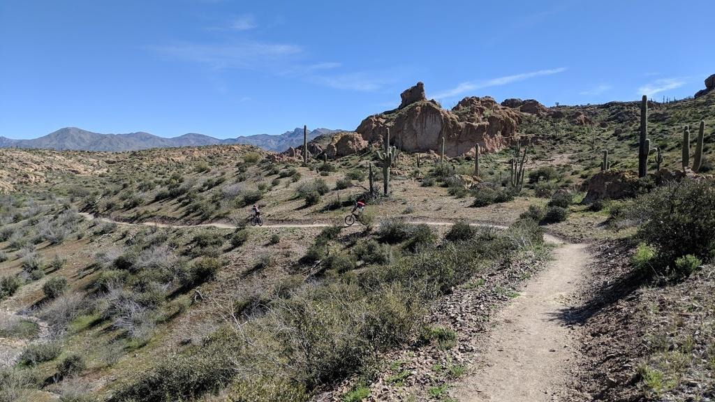 Arnett Canyon Trail (Picketpost)-img_20190315_103834.jpg