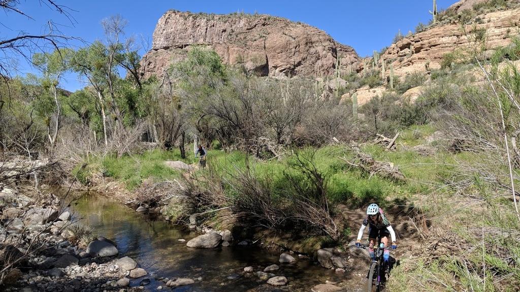 Arnett Canyon Trail (Picketpost)-img_20190315_110205.jpg