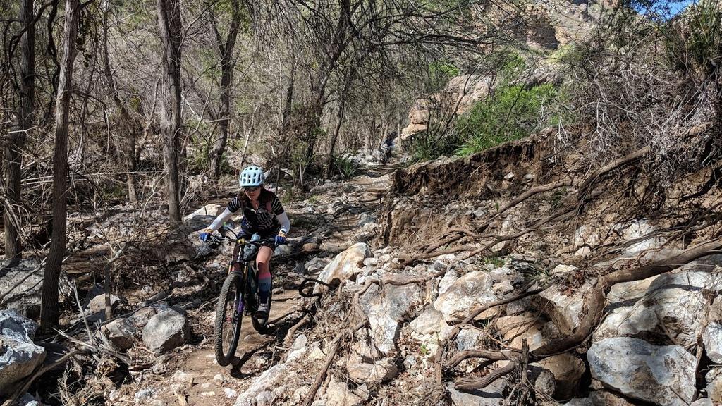 Arnett Canyon Trail (Picketpost)-img_20190315_111526.jpg