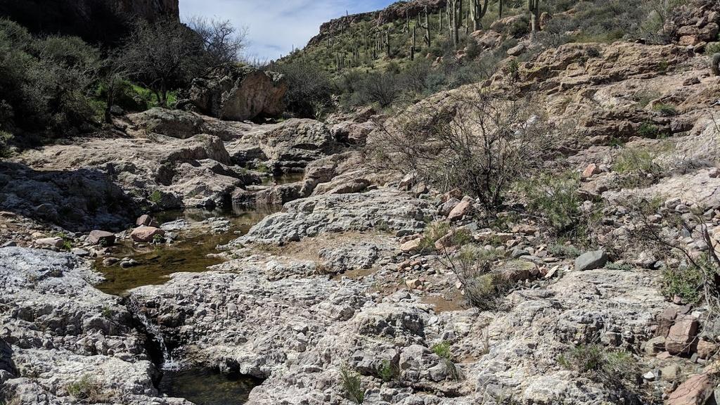 Arnett Canyon Trail (Picketpost)-img_20190315_115229.jpg