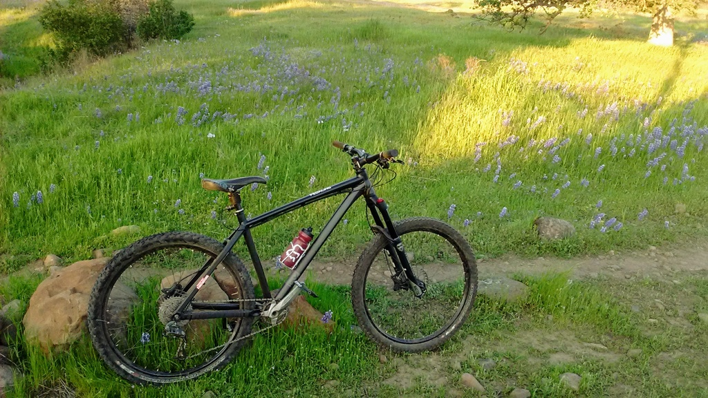 Show us your 2019 bike that you just acquired!!-img_20190410_191329295.jpg