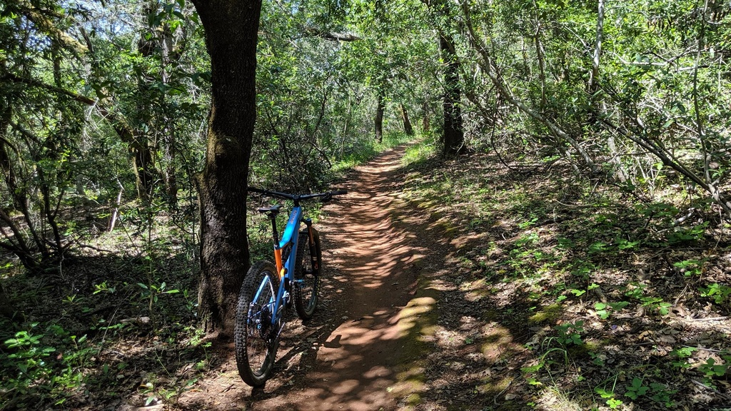 did you ride today?-img_20190525_145706-large-.jpg