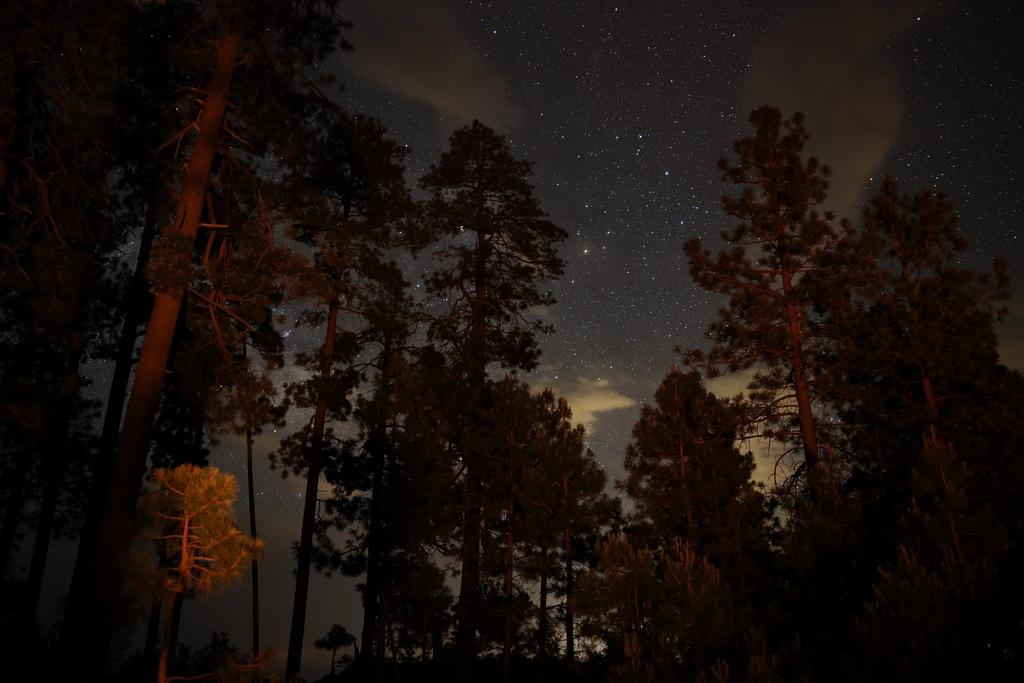 Night Photography - Post your shots!-img_20190628_213720_571.jpg