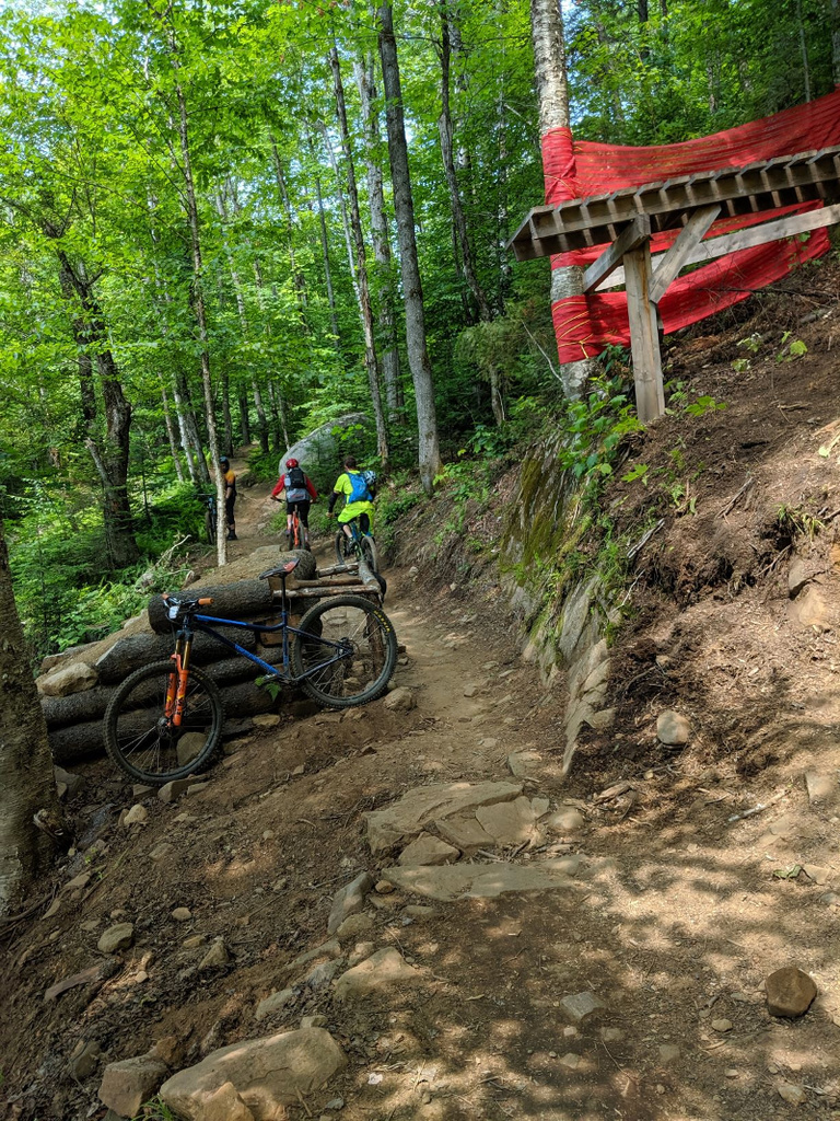 What is the fastest, fun Hard Tail 29 Trail bike?-img_20190727_122348.jpg