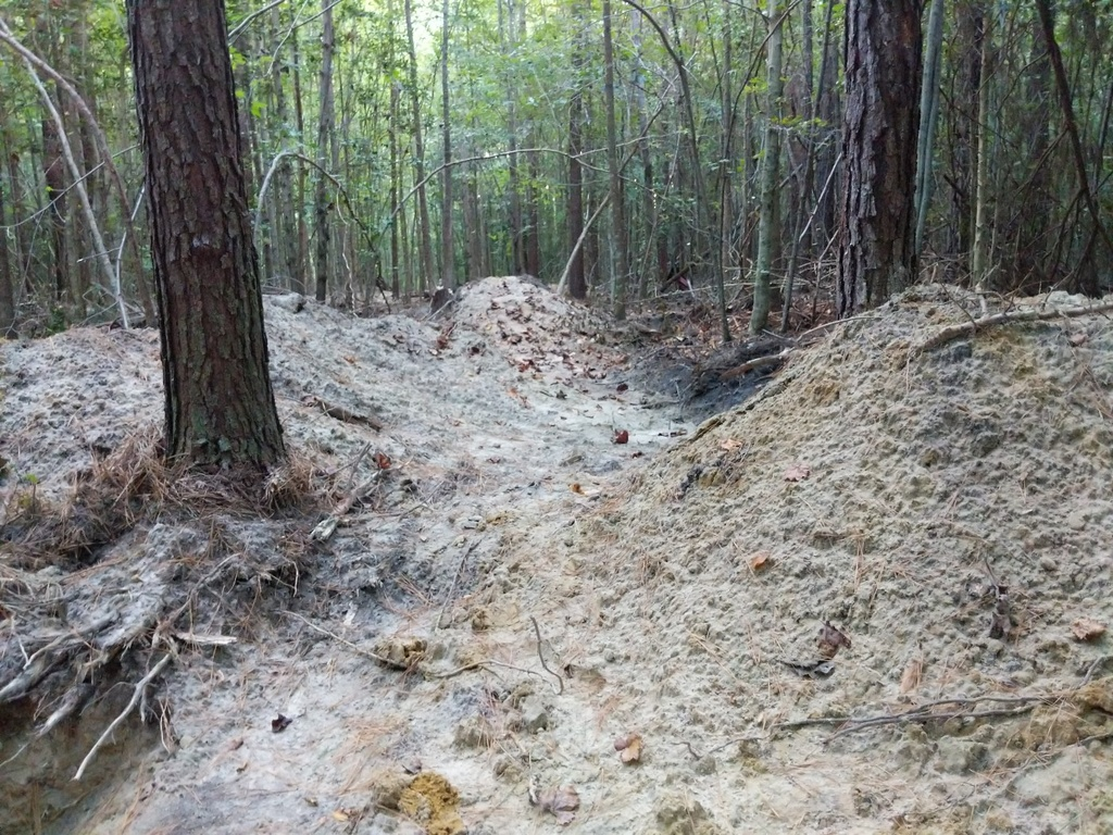 Trail Smoothing-img_20190918_182839-1400x1050.jpg