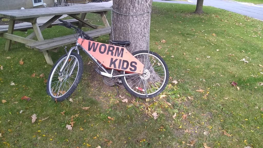 Sad Bikes-img_20191016_110559151.jpg