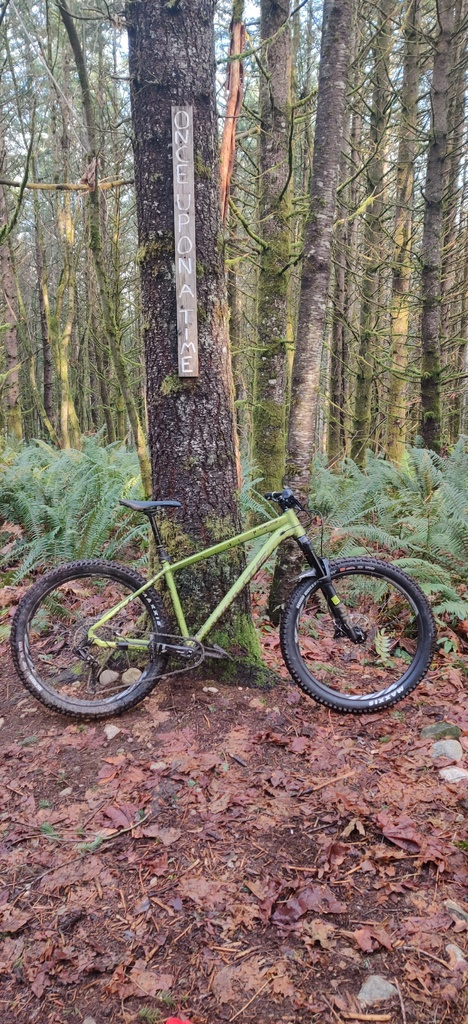 The All Mountain Hardtail Thread. Post up yours.-img_20191226_141234__01.jpg