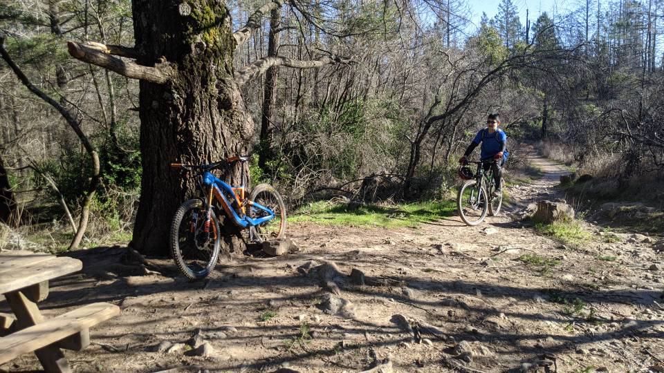 did you ride today?-img_20200209_152340.jpg