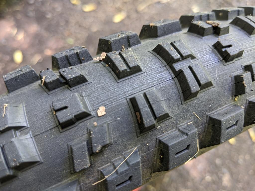 Specialized Eliminator Grid Tire-img_20200526_130412.jpg