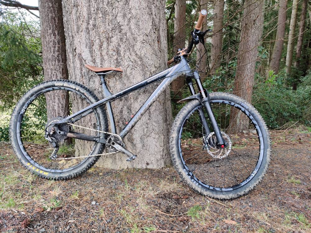 The All Mountain Hardtail Thread. Post up yours.-img_20200820_125440.jpg