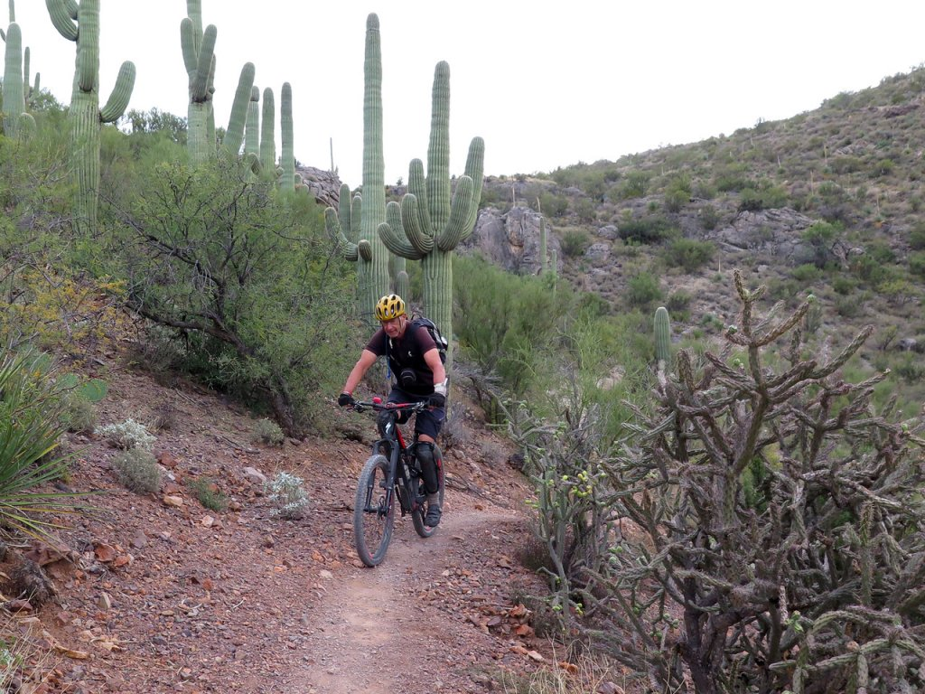 Easier sections of Arizona Trail-img_2066-x2.jpg