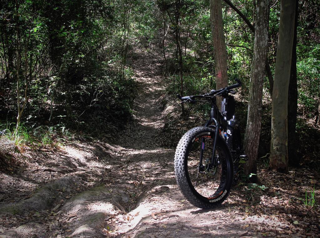 Fat Biking and health-img_2078.jpg