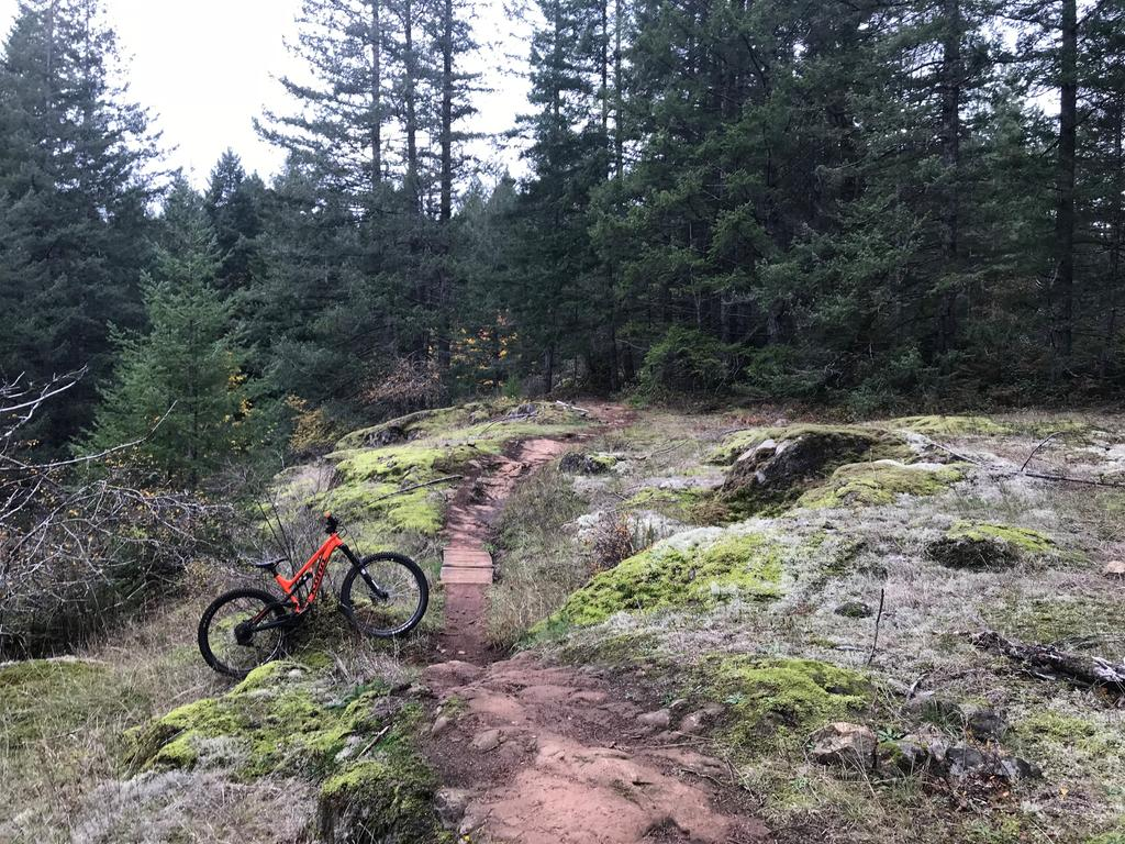 did you ride today?-img_2099-edited.jpg