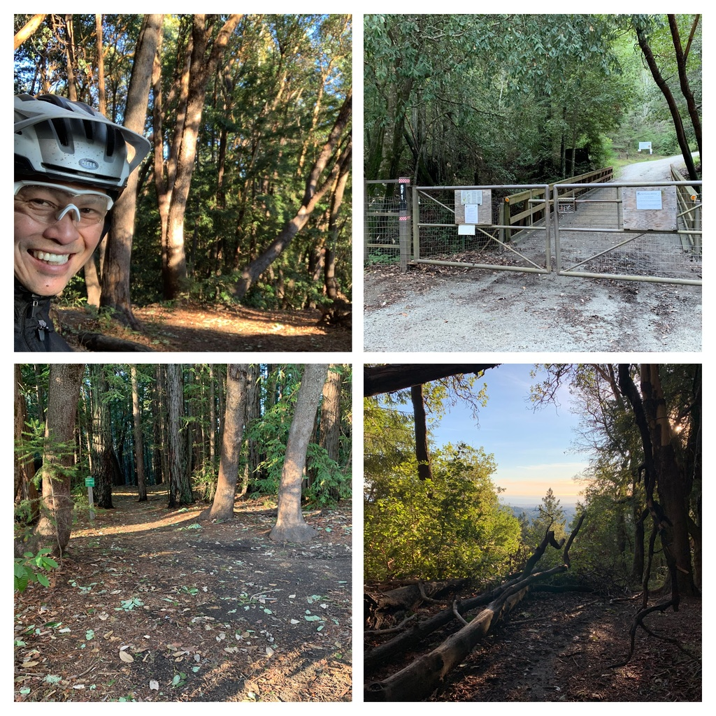 Jan 21-24, 2019 Weekly Ride and Trail Report-img_2111-collage.jpg