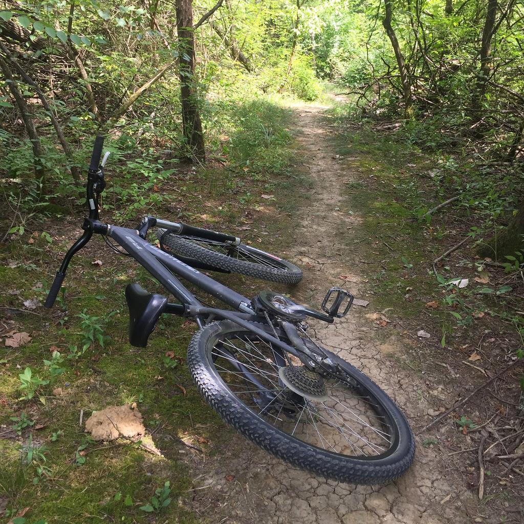 Show off Your Urban/Park/Dj Bike!-img_2178.jpg