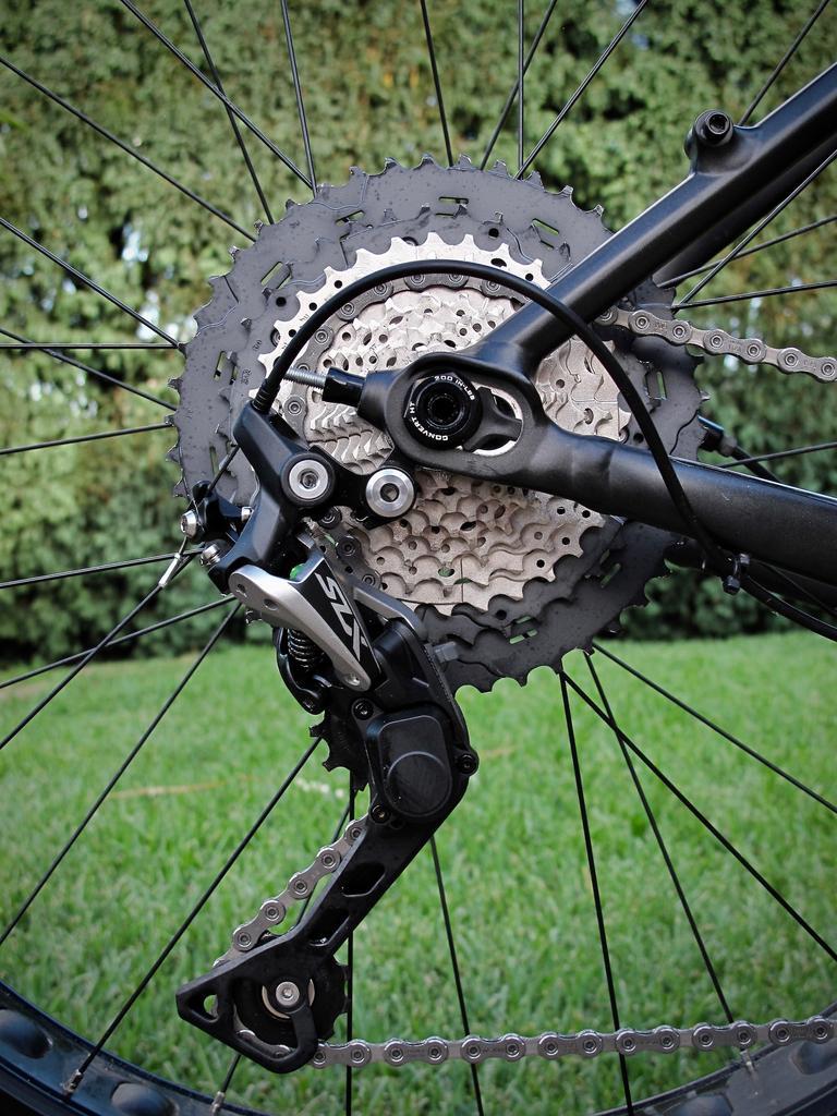 Fat Biking and health-img_2186.jpg
