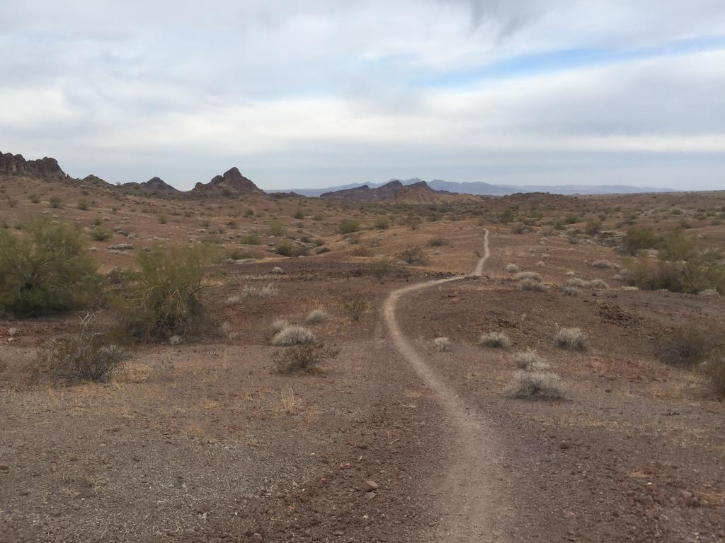 Looking for trail recommendations in Sara Park, Lake Havasu City-img_220132r.jpg