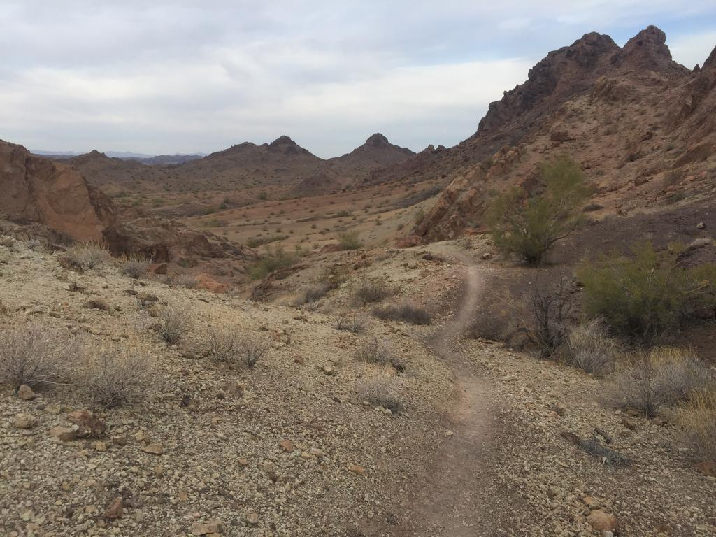 Looking for trail recommendations in Sara Park, Lake Havasu City-img_2202.jpg