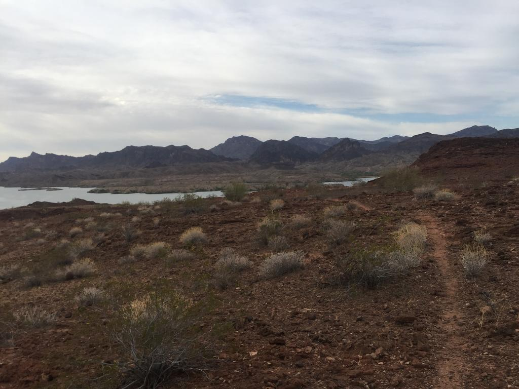 Looking for trail recommendations in Sara Park, Lake Havasu City-img_2207.jpg