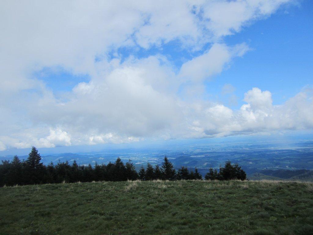 Mary's Peak-img_2208.jpg