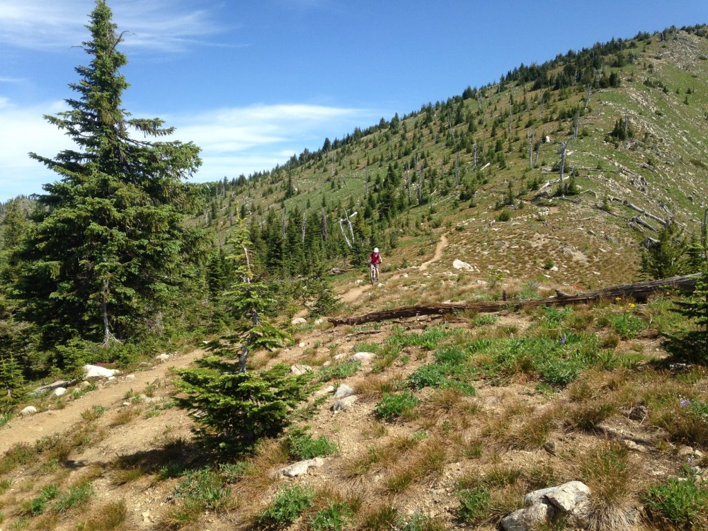 Top 5 Greatest All-Mountain Rides in Western Canada?-img_2208sm.jpg
