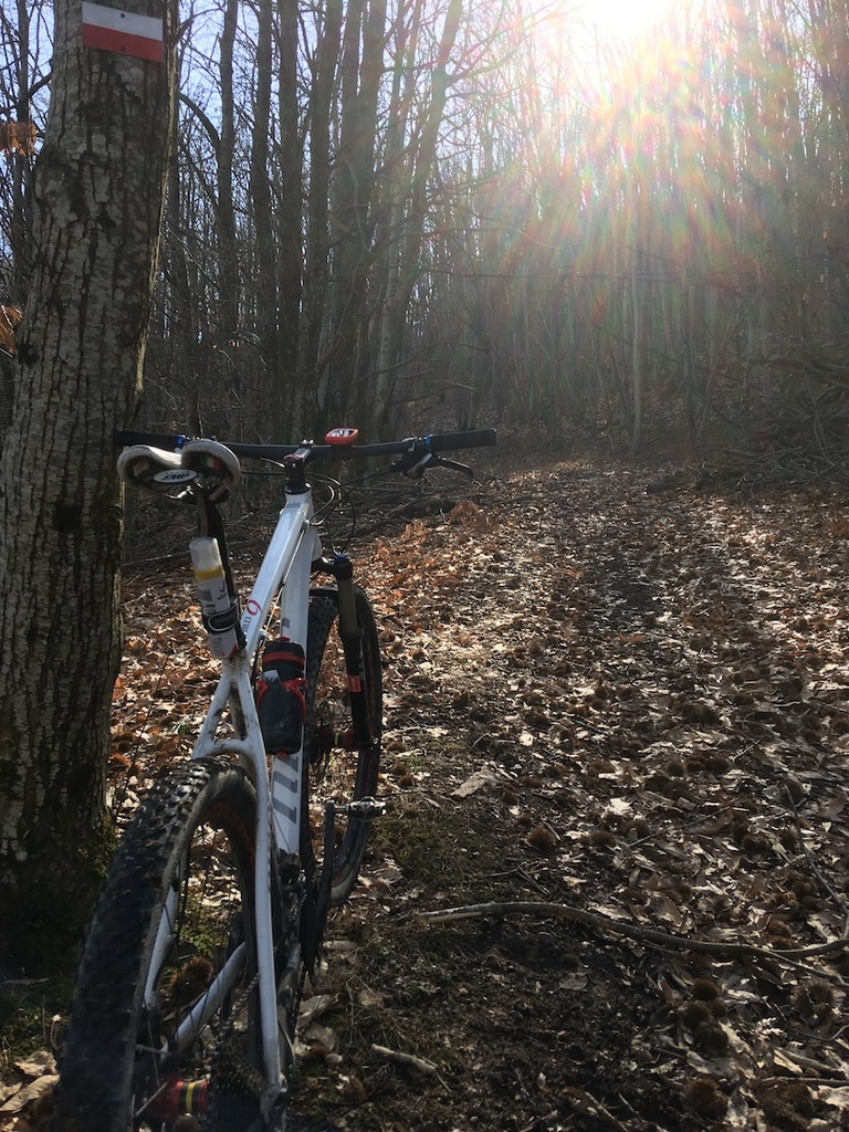did you ride today?-img_2247.jpg