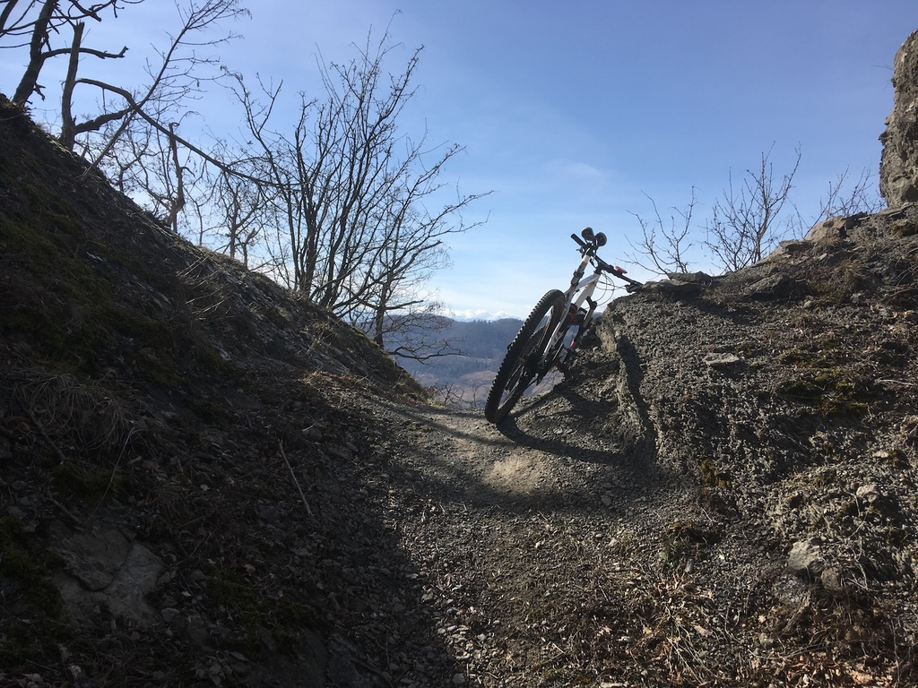 did you ride today?-img_2248.jpg