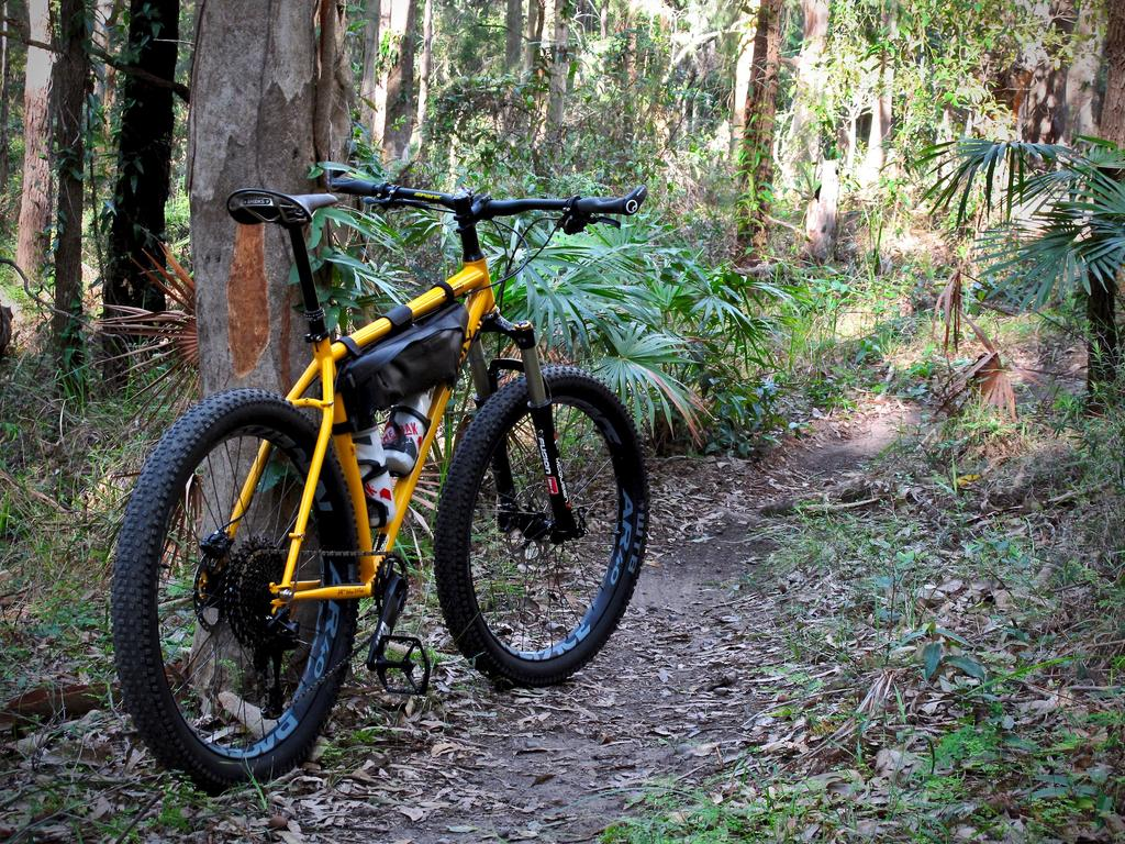 Post pics of your Surly!!!-img_2277.jpg