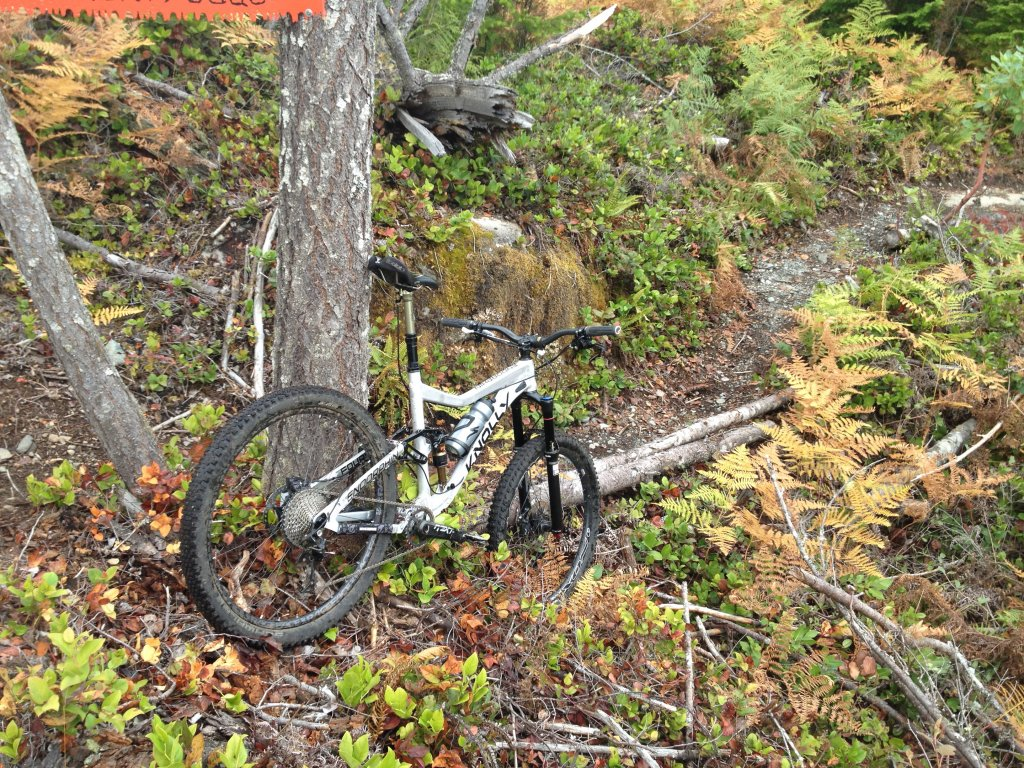 Endorphin 27.5 in the Wild: Mini Review-img_2278.jpg