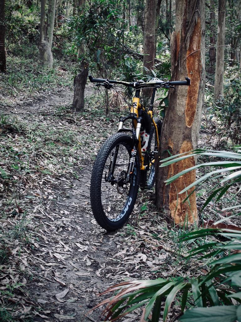 Fat Biking and health-img_2283.jpg