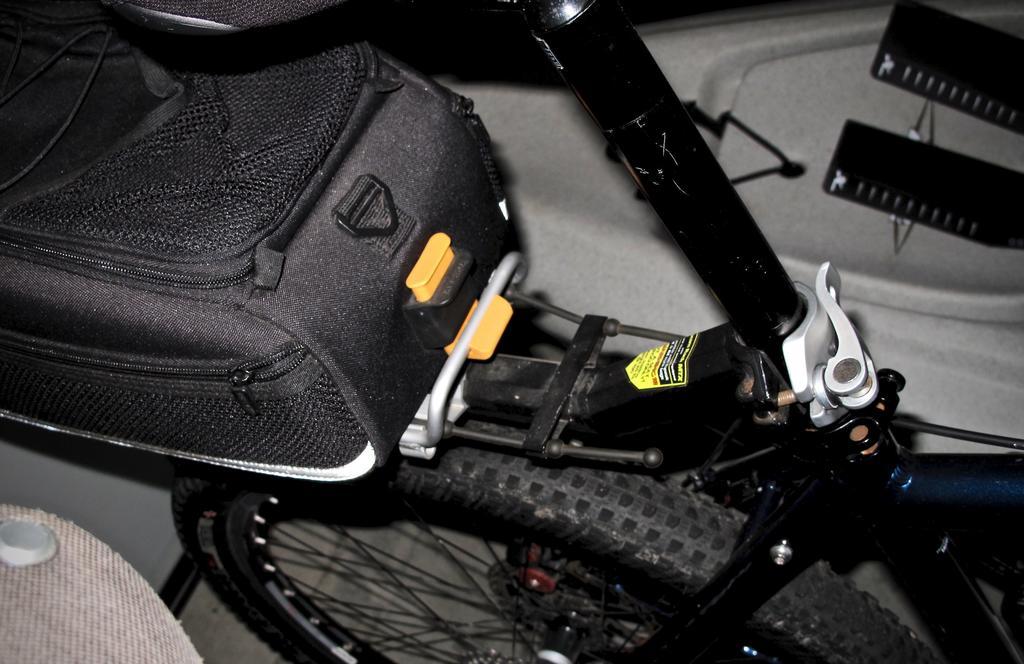 Fat Biking and health-img_2327.jpg