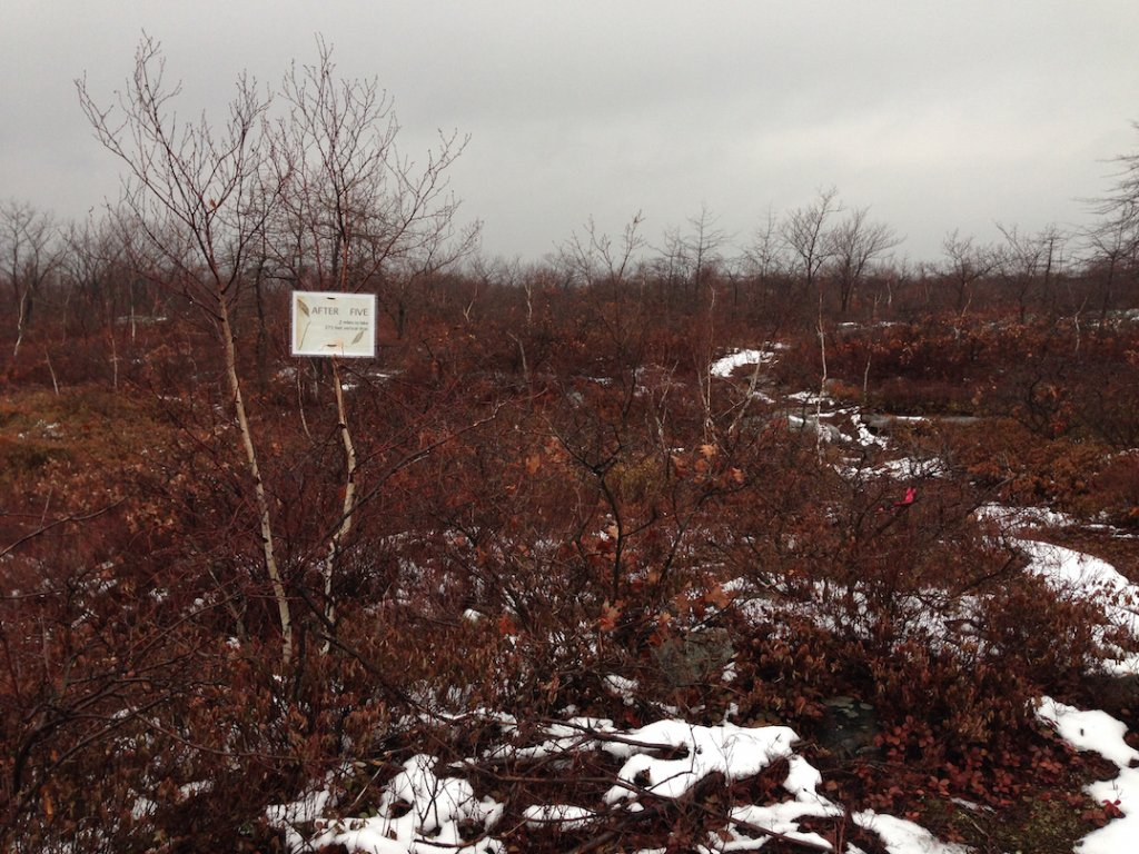 "New trail at Moosic Mountain: ""After Five""-img_2356-copy.jpg"