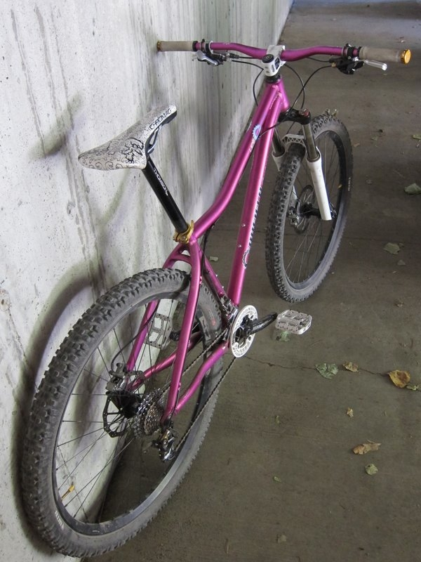 clydes that ride a 29er.... what are you riding?-img_2379.jpg