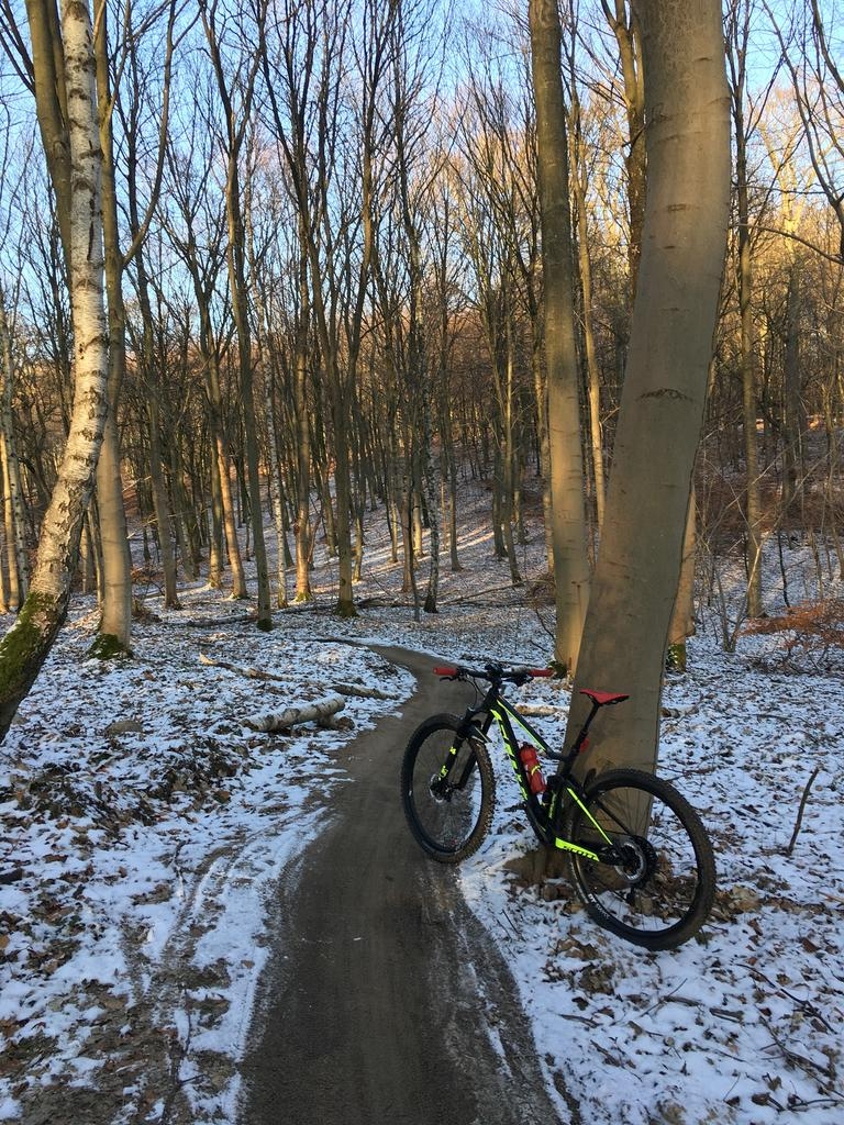 Do you ride singletrack to work?-img_2385.jpg