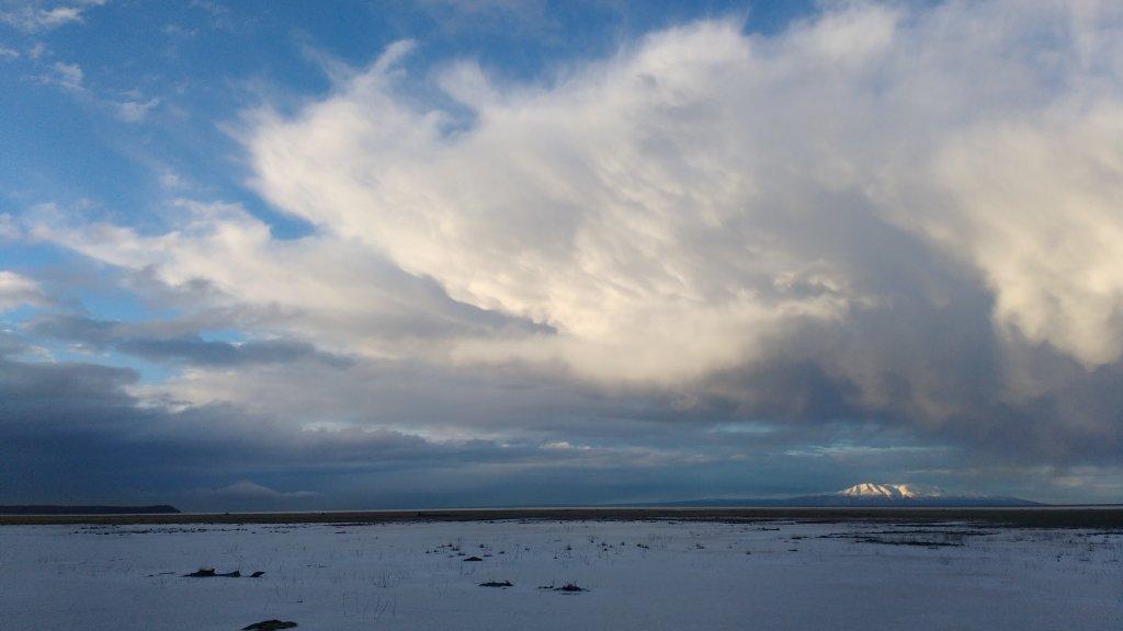Daily Alaska mtb picture thread-img_24.jpg