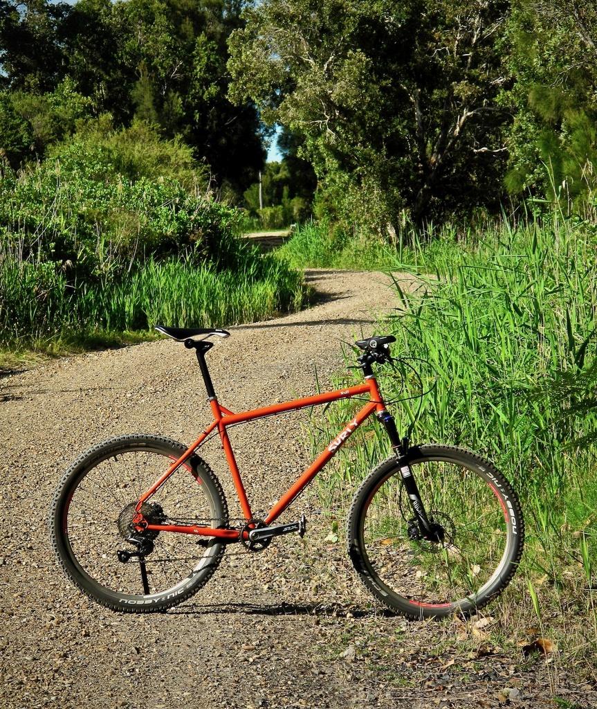 Fat Biking and health-img_2437.jpg