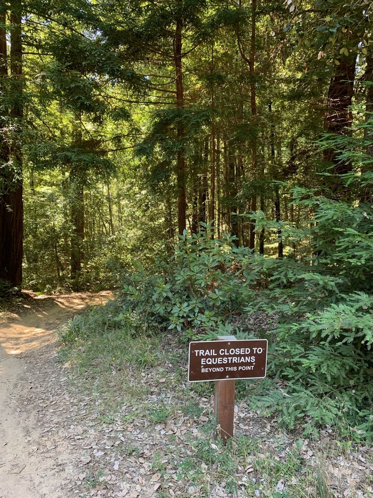 Aug 2-4, 2019 Weekend Ride and Trail Report-img_2440.jpg