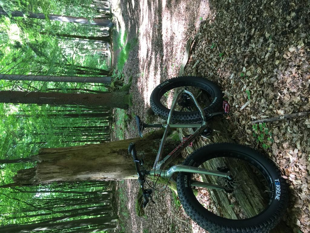 Your Latest Fatbike Related Purchase (pics required!)-img_2448.jpg