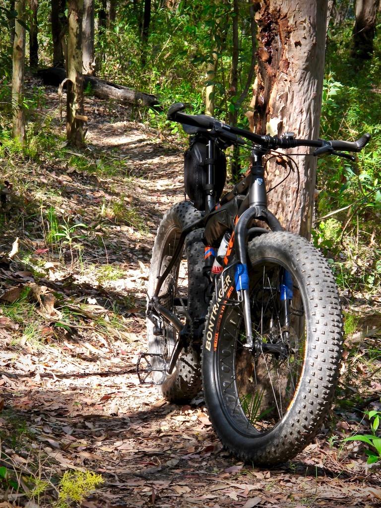 Fat Biking and health-img_2455.jpg