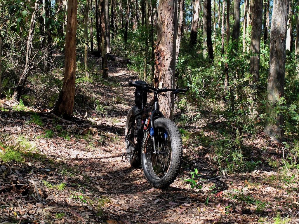 Fat Biking and health-img_2456.jpg