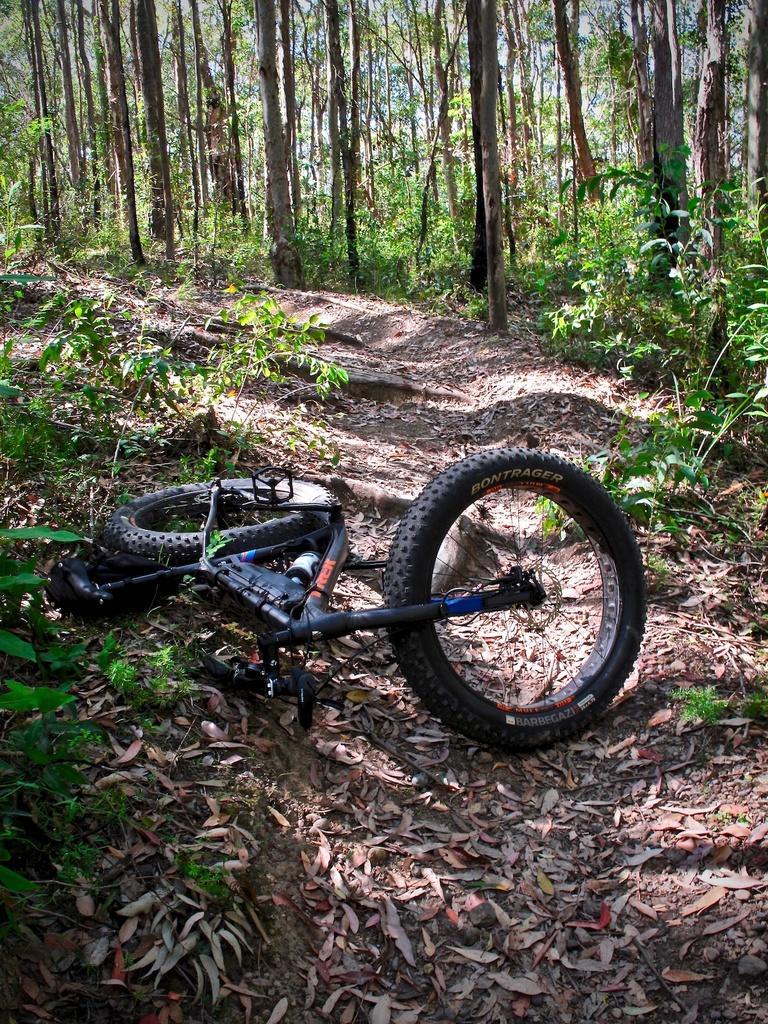 Fat Biking and health-img_2458.jpg