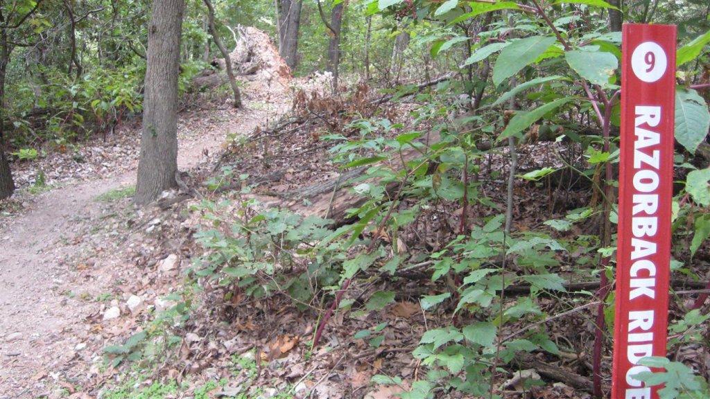 Bike + trail marker pics-img_2478-medium-.jpg