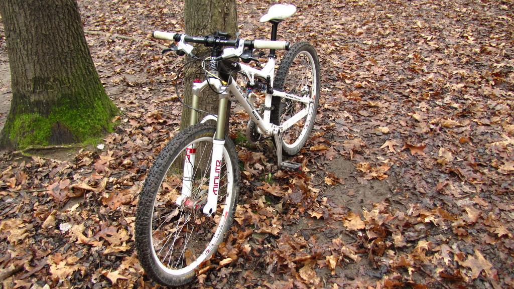 Titus Bike Pr0n-img_2484_resize.jpg