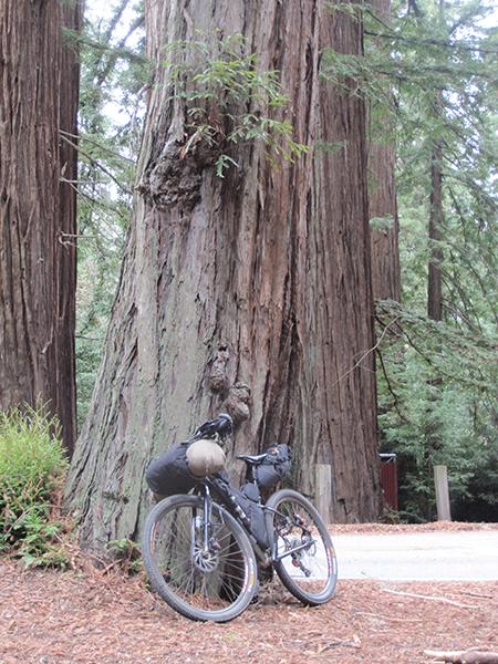 Bay Area Bikepacking 101-img_2491.jpg