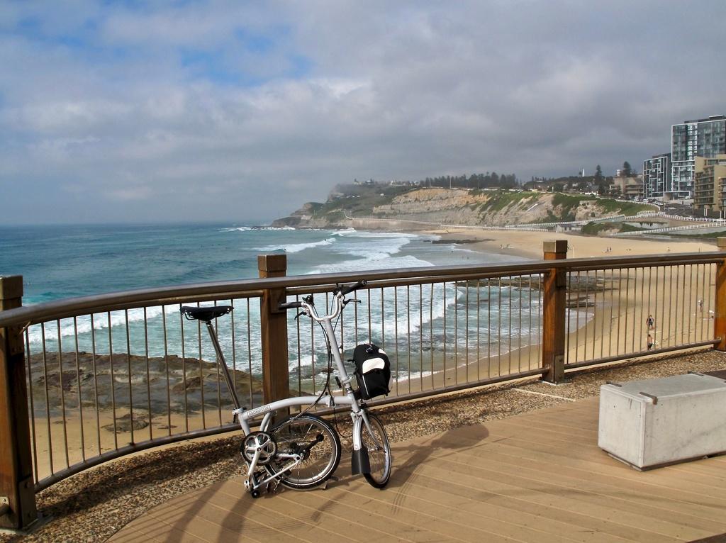 Fat Biking and health-img_2531.jpg