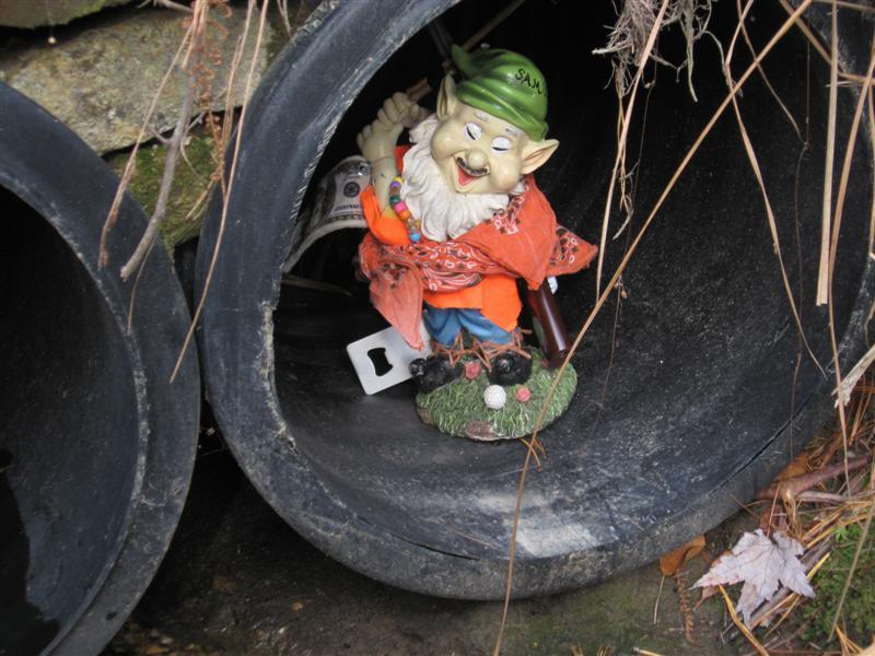 Adventures with the Pisgah Gnome-img_2537-medium-.jpg