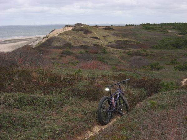 Beach/Sand riding picture thread.-img_2556.jpg